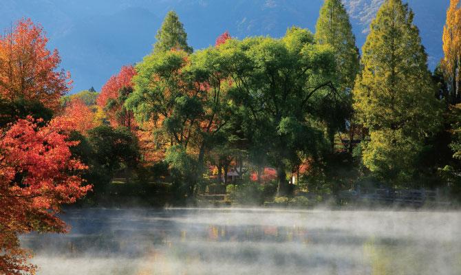 金鱗湖のイメージ